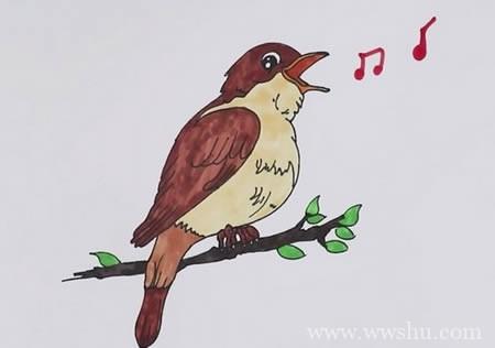 夜莺简笔画如何画彩色步骤图