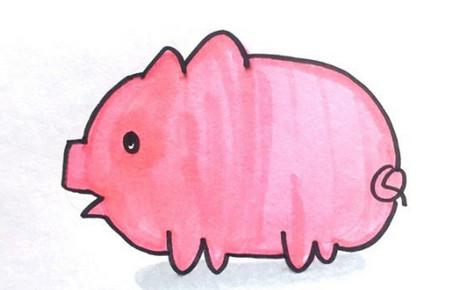用字母画猪简笔画法步骤图