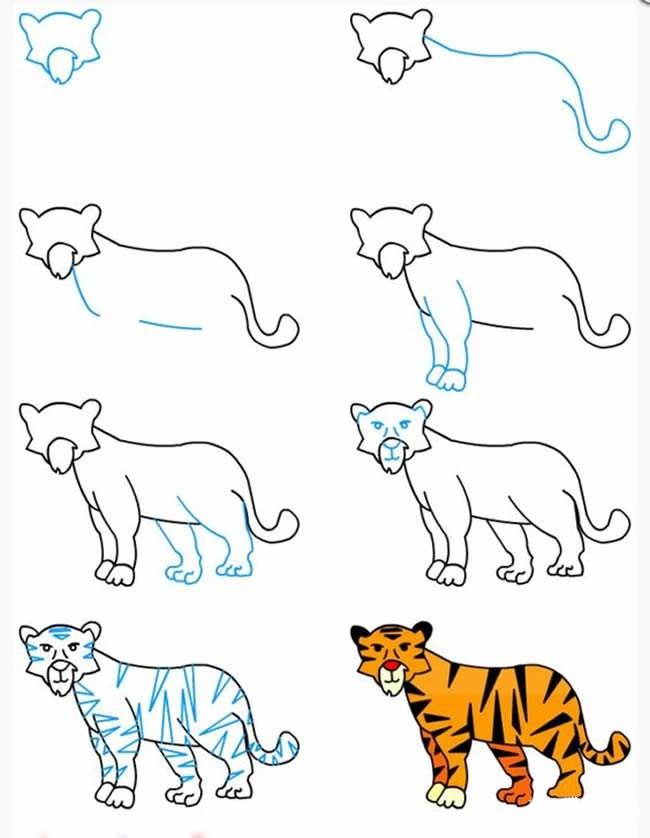 简笔画老虎的画法_森林之王老虎简笔画画法步骤图片