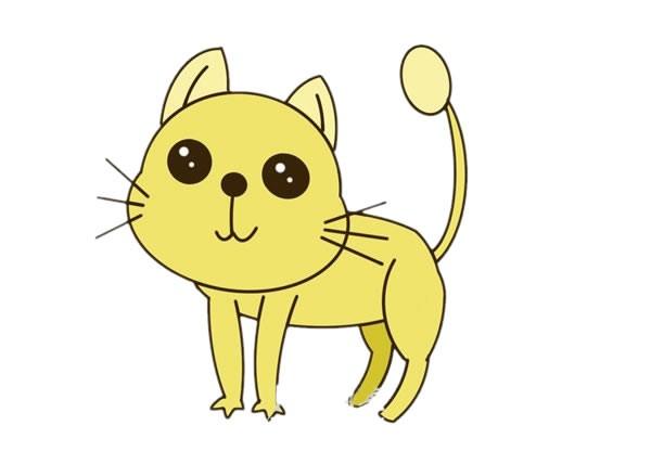 黄猫简笔画图片带颜色 小猫简笔画步骤画法图片