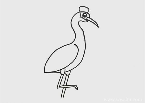 丹顶鹤简笔画涂色,丹顶鹤简笔画步骤画法教程