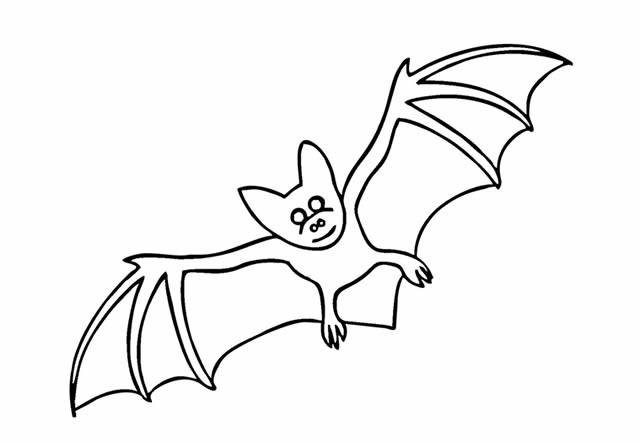 儿童学画蝙蝠简笔画简单画法图片