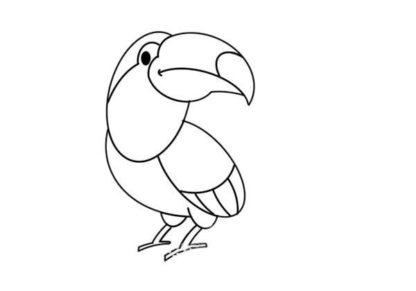彩色犀鸟简笔画的画法步骤教程