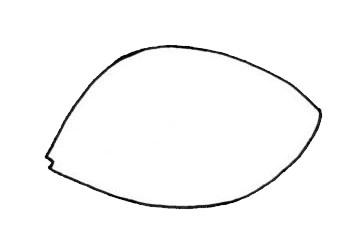热带观赏鱼简笔画画法步骤图片大全