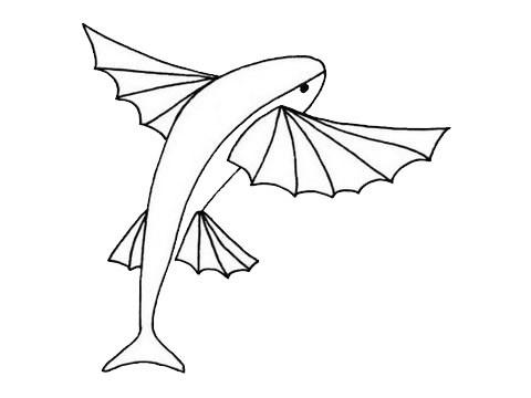 飞鱼简笔画的画法步骤图片大全
