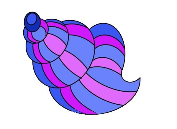 彩色海螺简笔画画法步骤图片