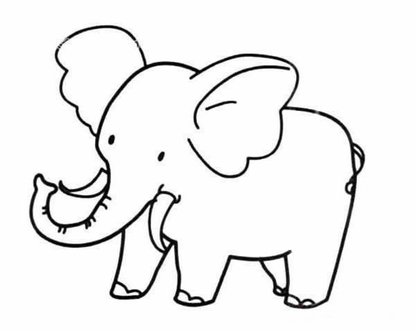简单又漂亮的大象简笔画的画法