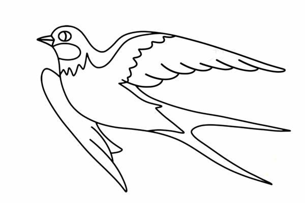 漂亮的小燕子简笔画画法步骤图片教程