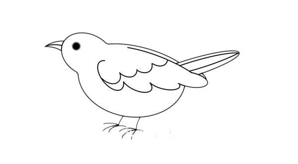 夜莺简笔画画法步骤图片教程