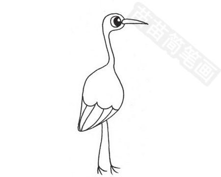 超简单的丹顶鹤简笔画的画法图片大全