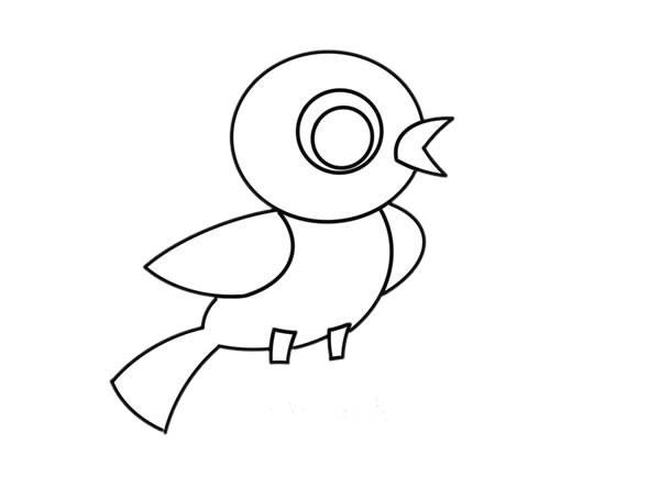 超萌小鸟简笔画步骤图解教程