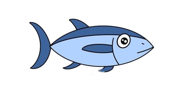 金枪鱼简笔画步骤图解教程