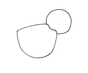 鹈鹕如何画的漂亮 鹈鹕简笔画简单步骤图片大全