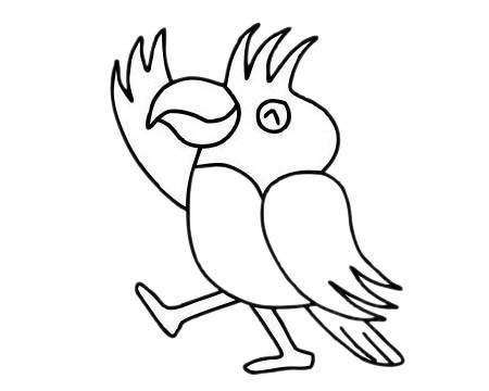 最漂亮的鹦鹉如何画 鹦鹉简笔画步骤图片大全