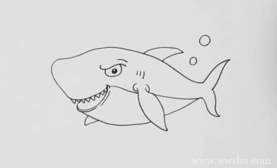 彩色鲨鱼简笔画 鲨鱼如何画才可怕又凶猛又漂亮