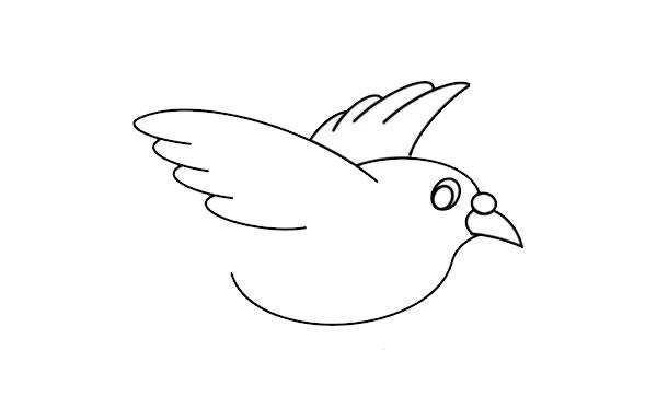 可爱白鸽子如何画简笔画简单又漂亮