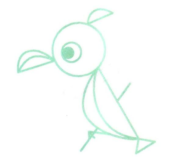 鹦鹉简笔画步骤图解教程 - 鹦鹉的画法