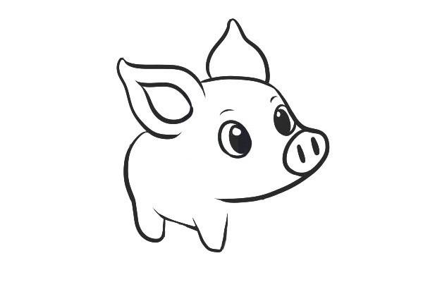 可爱的小猪简笔画步骤图解教程 一起来学画吧