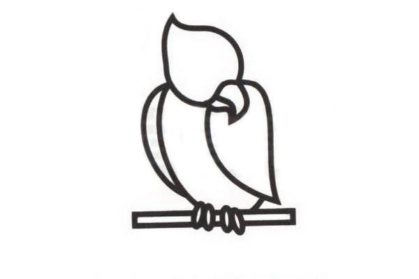 鹦鹉如何画 鹦鹉简笔画步骤图解教程