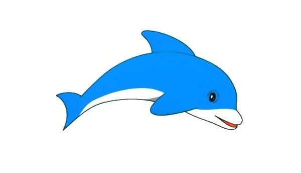 一步步教你画可爱的海豚简笔画画法步骤图解教程
