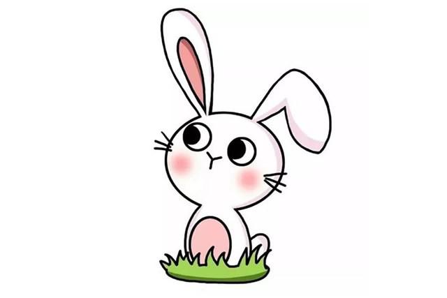 小兔子简笔画 简单六步画出小兔子简笔画步骤教程