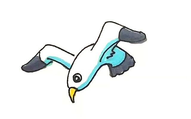 海鸥简笔画 海鸥彩色画法步骤图解教程
