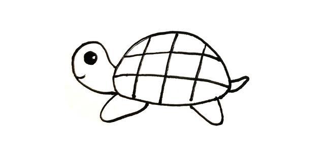 12种简单可爱的卡通海洋生物简笔画图片大全