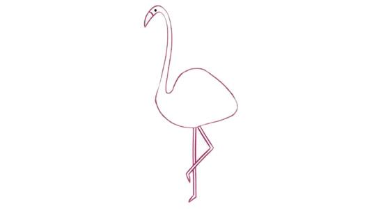 火烈鸟简笔画的画法步骤图解教程及图片大全