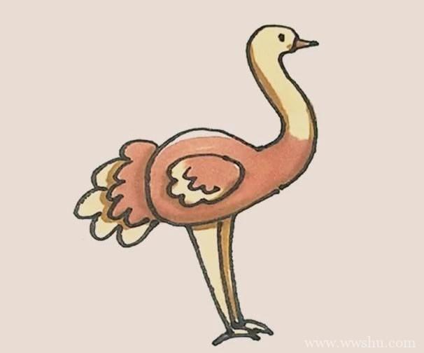 鸵鸟简笔画的画法步骤图解教程