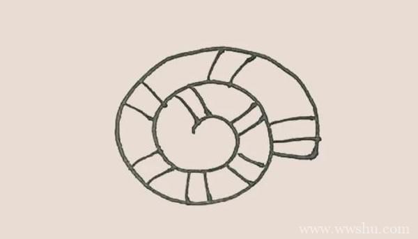 海螺简笔画的画法步骤图解教程