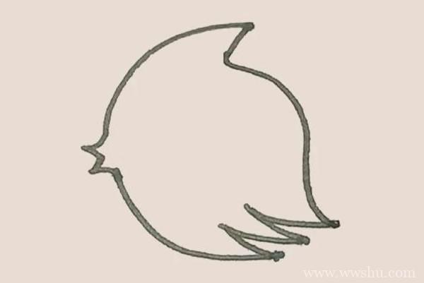 热带鱼简笔画的画法步骤图解教程