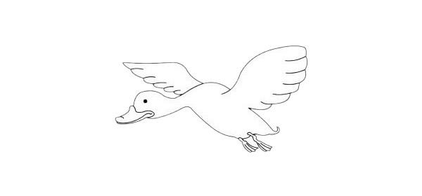大白鹅简笔画的简单画法步骤图解教程及图片大全
