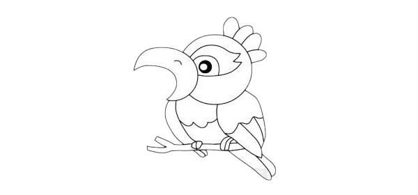 卡通鹦鹉简笔画简单画法步骤教程及图片大全