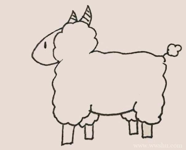 绵羊简笔画彩色画法步骤图解教程