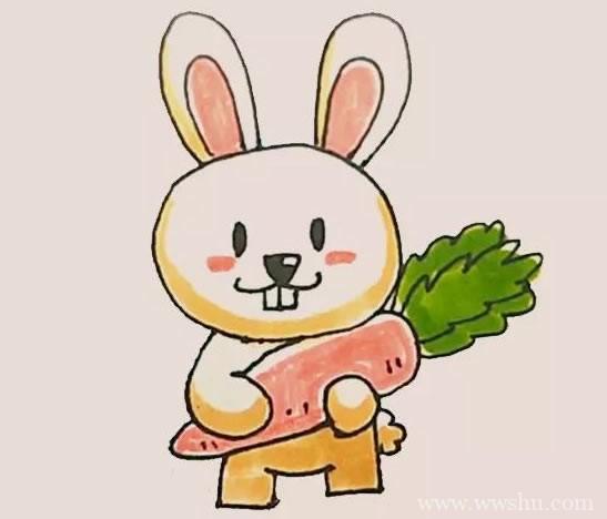 抱着胡萝卜的兔子简笔画彩色画法步骤图解教程