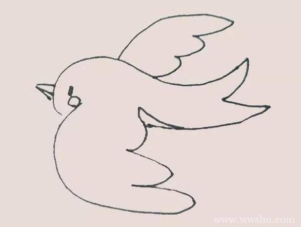 小鸟简笔画/彩色画法/步骤图解教程