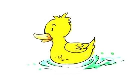 水中的小黄鸭简笔画画法步骤图片大全
