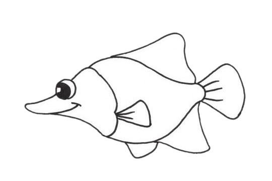 【鲽鱼简笔画】可爱的鲽鱼简笔画步骤图片大全