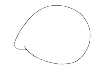 河豚简笔画_超简单的河豚简笔画步骤画法及图片大全