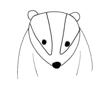 卡通獾的简笔画步骤画法及图片大全