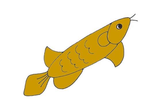 龙鱼如何画简单又可爱_龙鱼简笔画步骤画法教程