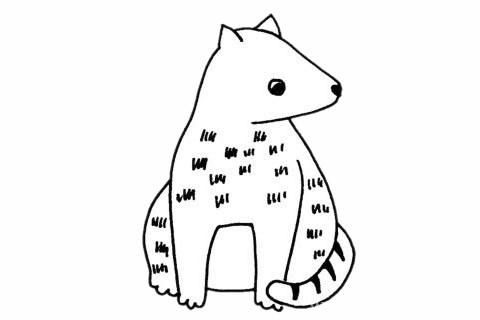 灵猫简笔画_灵猫简笔画步骤画法教程及图片大全