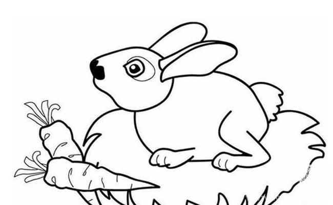 兔子胡萝卜简笔画_小兔子和胡萝卜简笔画图片大全