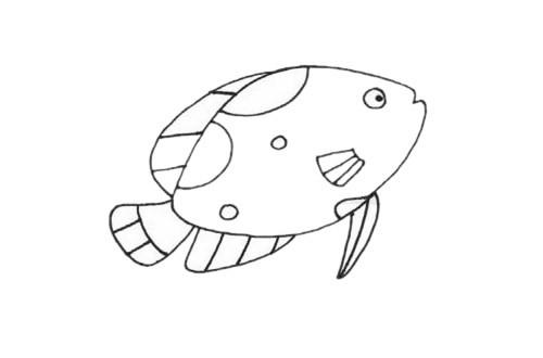 热带观赏鱼简笔画步骤画法教程/图片大全