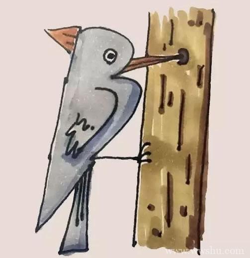 最好画的啄木鸟简笔画步骤画法教程