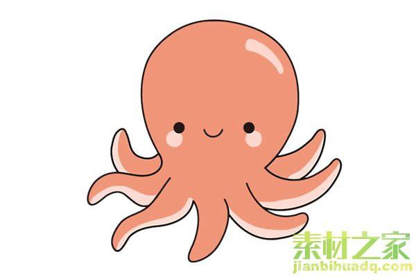 章鱼简笔画图片带颜色_卡通章鱼简笔画步骤画法教程