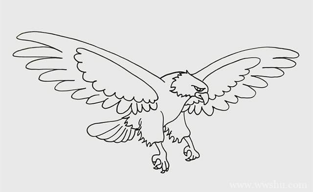 老鹰如何画_飞翔的老鹰简笔画步骤画法图片教程