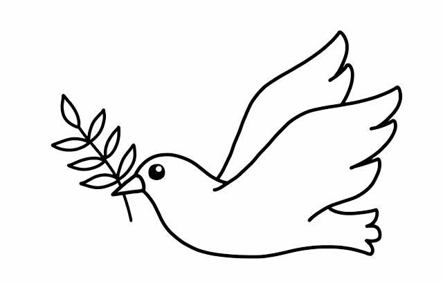 如何画鸽子简笔画画法步骤图解教程