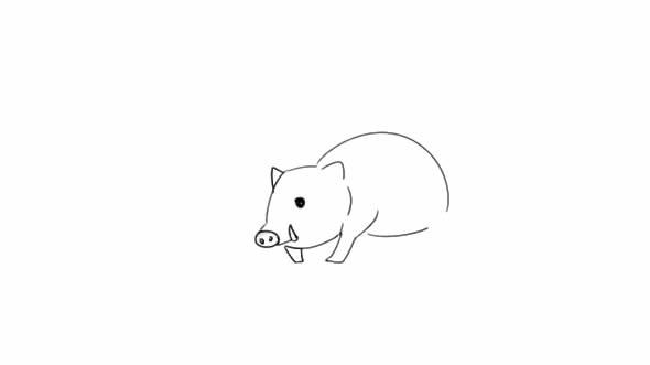 豪猪如何画_带刺豪猪简笔画步骤手绘教程