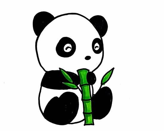 小熊猫简笔画可爱又简单的颜色_熊猫简笔画画法步骤图片